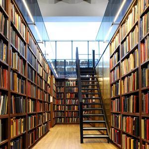 Библиотеки Пустошки